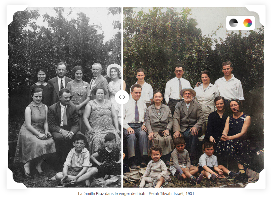myheritage incolor